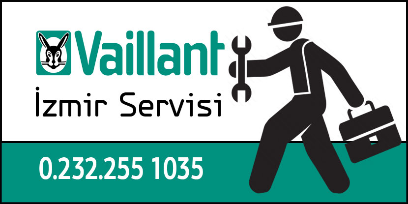 Pasaport  Vaillant Servisi